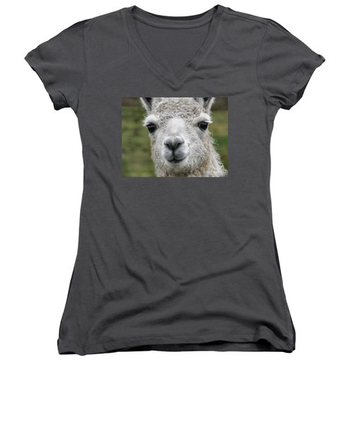 Friends From The Field Women's V-Neck