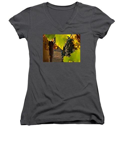 Fruit Of The Vine Women's V-Neck T-Shirt