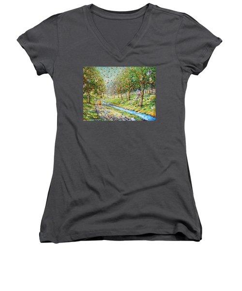Garden Of Prosperity Women's V-Neck T-Shirt