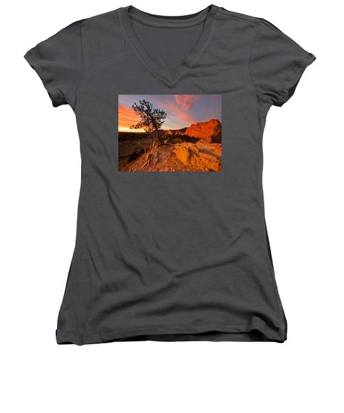 Garden Sunrise Women's V-Neck T-Shirt