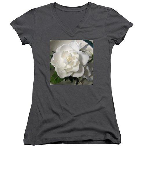 Gardenia Bowl Women's V-Neck T-Shirt (Junior Cut) by Deborah Lacoste