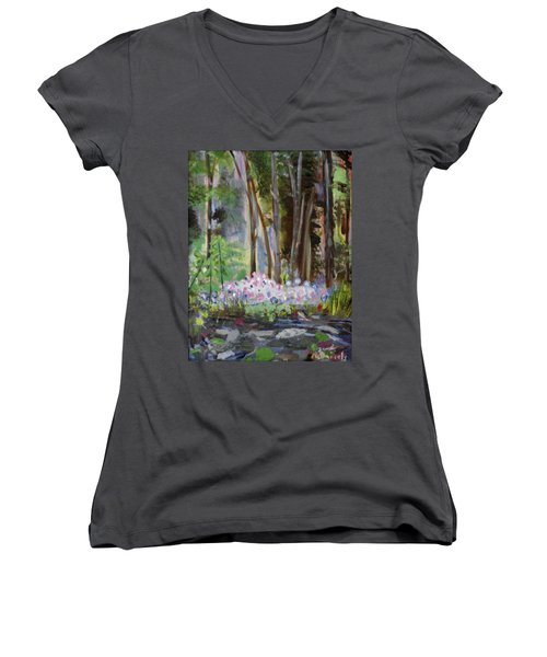 Gateway At The Balsams Women's V-Neck T-Shirt (Junior Cut) by Michael Daniels
