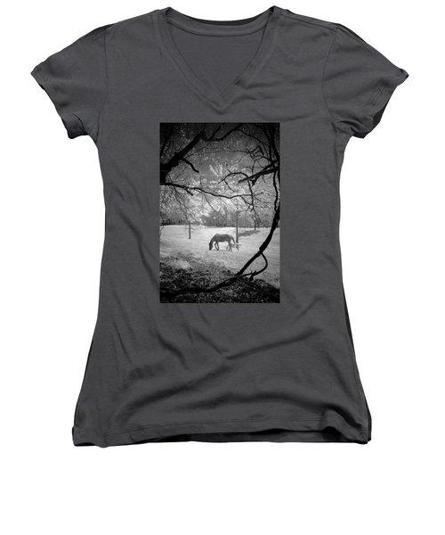 Georgia Horses Women's V-Neck T-Shirt