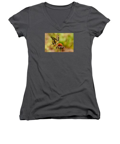 Giant Swallowtail Butterfly Women's V-Neck T-Shirt (Junior Cut) by Kathy Baccari