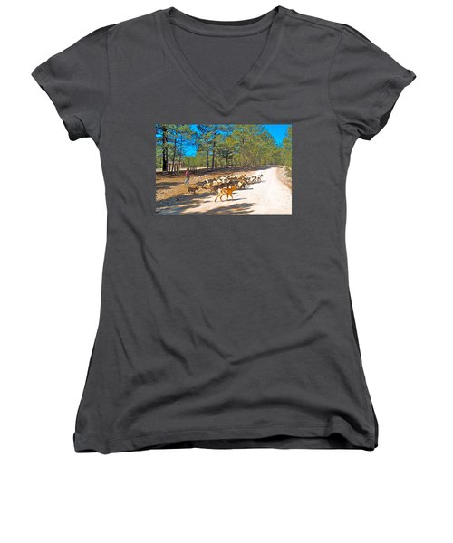 Goats Cross The Road With Tarahumara Boy As Goatherd-chihuahua Women's V-Neck (Athletic Fit)