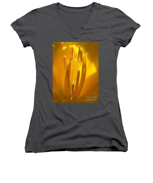 God's Light Shining Through Women's V-Neck T-Shirt