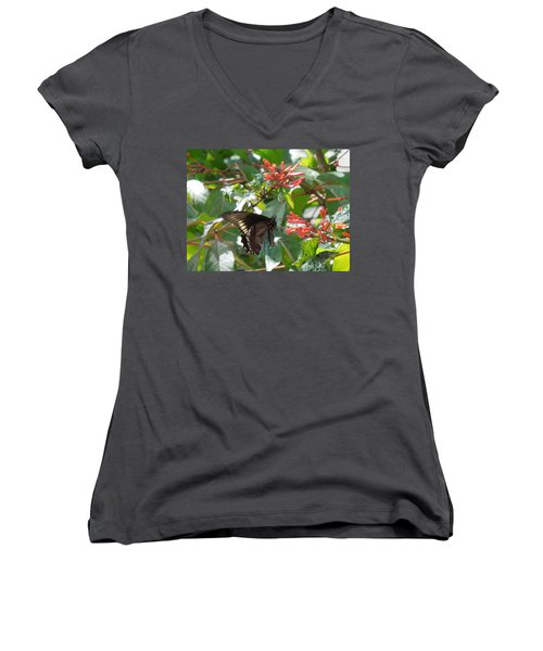 Women's V-Neck T-Shirt (Junior Cut) featuring the photograph Gold Rim Swallowtail by Ron Davidson
