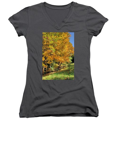Women's V-Neck T-Shirt (Junior Cut) featuring the photograph Golden Fenceline by Gordon Elwell