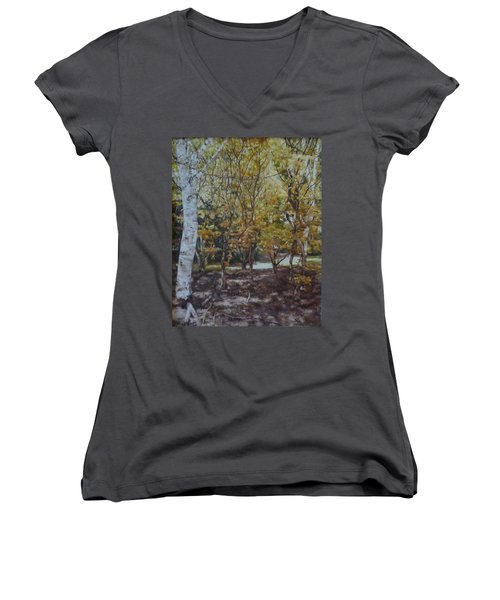 Golden Glade Women's V-Neck T-Shirt