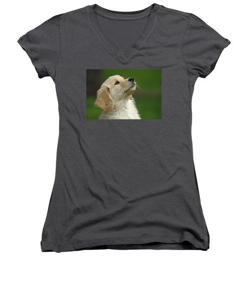 Golden Retriever Puppy Women's V-Neck T-Shirt
