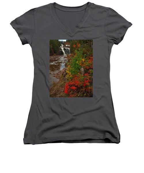 Gooseberry Foilage Women's V-Neck T-Shirt