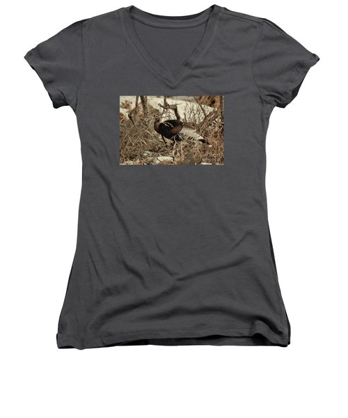 Gould's Wild Turkey Xii Women's V-Neck (Athletic Fit)