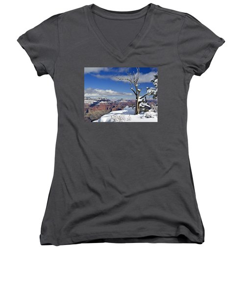 Grand Canyon Winter -2 Women's V-Neck (Athletic Fit)