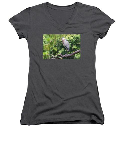 Great Blue Heron I Women's V-Neck