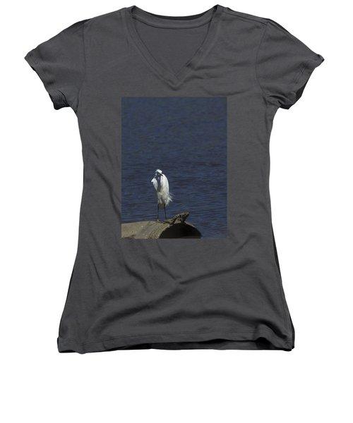 Great Egret Women's V-Neck