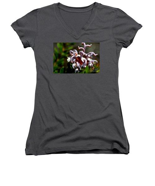 Women's V-Neck T-Shirt (Junior Cut) featuring the photograph Great Spider Flower by Miroslava Jurcik