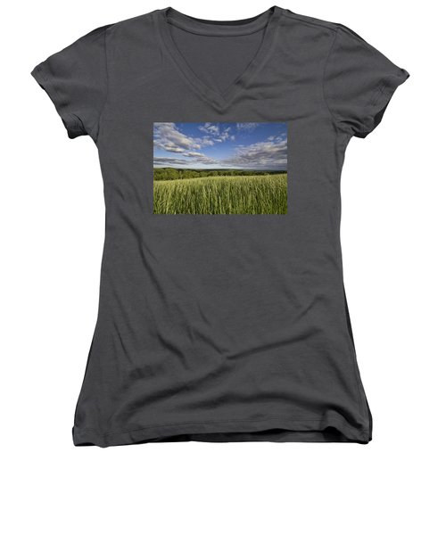 Green And Blue Women's V-Neck (Athletic Fit)