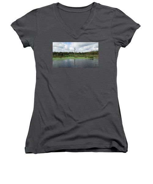 Women's V-Neck T-Shirt (Junior Cut) featuring the photograph Green Cay Panorama by Ron Davidson