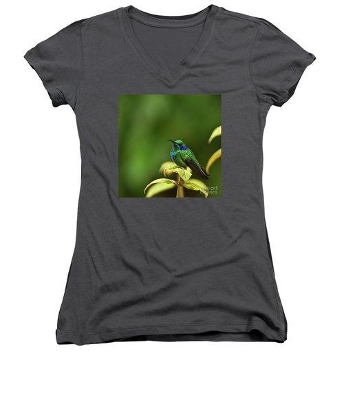 Green Violetear Hummingbird Women's V-Neck