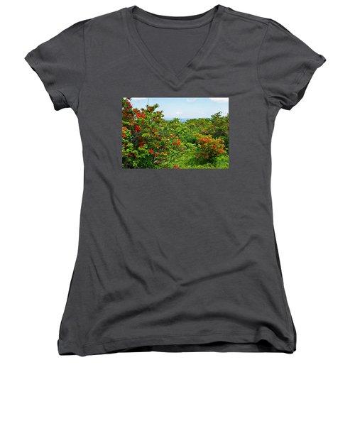 Gregory Bald Women's V-Neck T-Shirt (Junior Cut) by Melinda Fawver