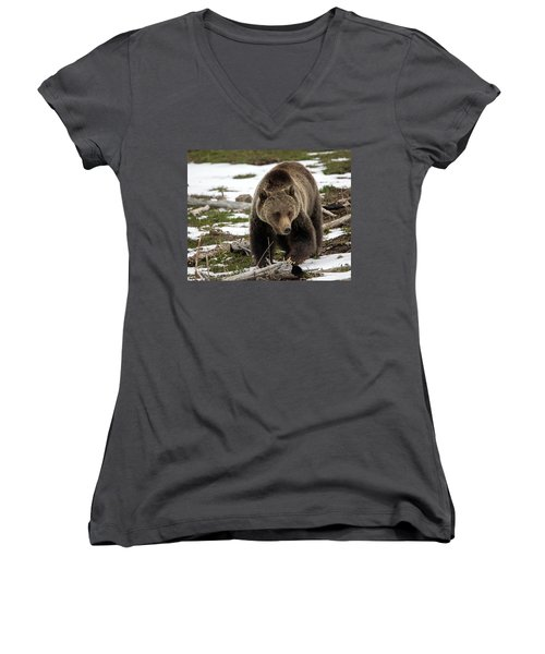 Women's V-Neck T-Shirt (Junior Cut) featuring the photograph Grizzly Bear In Spring by Jack Bell
