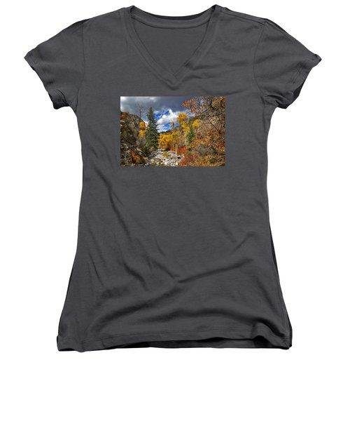Grizzly Creek Cottonwoods Women's V-Neck T-Shirt (Junior Cut) by Jeremy Rhoades