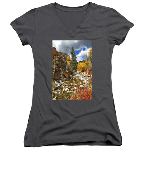 Women's V-Neck T-Shirt (Junior Cut) featuring the photograph Grizzly Creek Cottonwoods Vertical by Jeremy Rhoades