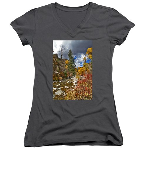 Women's V-Neck T-Shirt (Junior Cut) featuring the photograph Grizzly Creek Vertical by Jeremy Rhoades