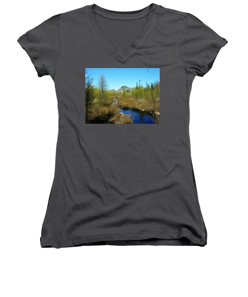 Women's V-Neck T-Shirt (Junior Cut) featuring the photograph Groton State Forest Moose Country by Sherman Perry
