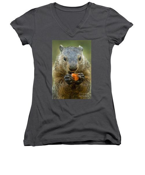 Groundhogs Favorite Snack Women's V-Neck T-Shirt (Junior Cut) by Paul W Faust -  Impressions of Light
