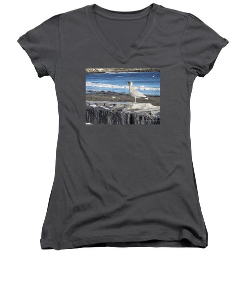 Seagull  Women's V-Neck T-Shirt (Junior Cut) by Eunice Miller