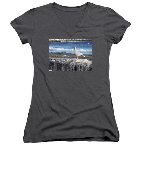 Women's V-Neck T-Shirt (Junior Cut) featuring the photograph Seagull  by Eunice Miller