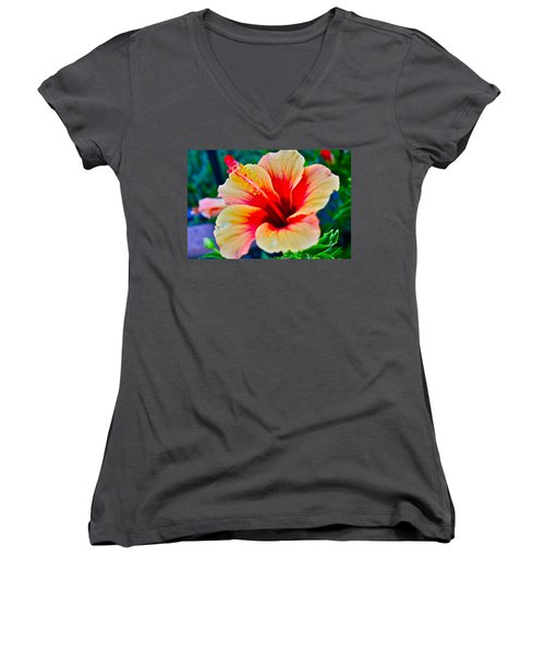 Gumamela1 Women's V-Neck T-Shirt