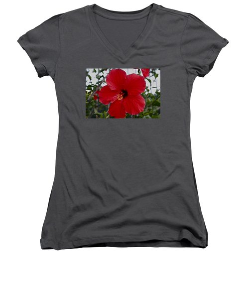 Gumamela2 Women's V-Neck T-Shirt