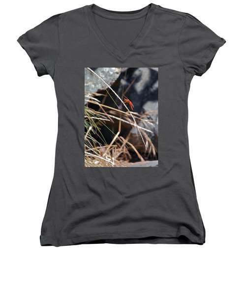 Women's V-Neck T-Shirt (Junior Cut) featuring the photograph Hanging On by Michele Myers