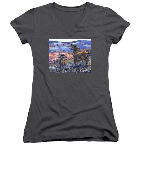 Harbinger Women's V-Neck T-Shirt