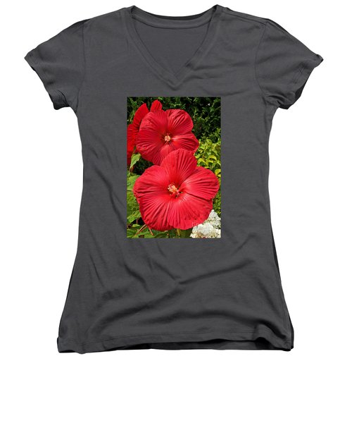 Women's V-Neck T-Shirt (Junior Cut) featuring the photograph Hardy Hibiscus by Sue Smith