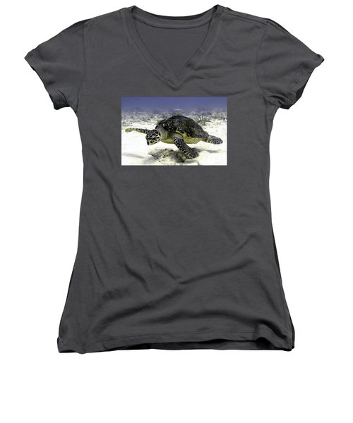 Hawksbill Caribbean Sea Turtle Women's V-Neck (Athletic Fit)