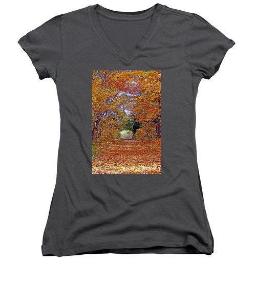 Hawthorn Hollow Women's V-Neck T-Shirt