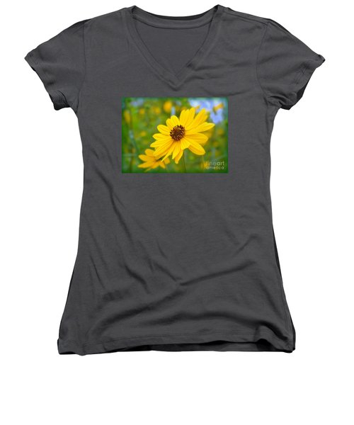 Helianthus Women's V-Neck (Athletic Fit)