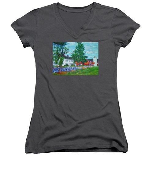 Henry Warren House And Barn Women's V-Neck T-Shirt