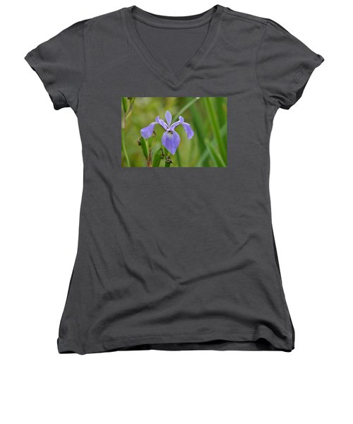 Hidden Companions Women's V-Neck T-Shirt