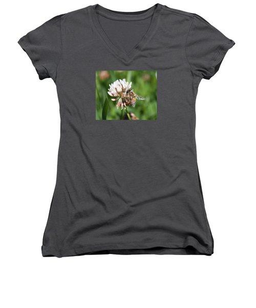 Honeybee On Clover Women's V-Neck T-Shirt (Junior Cut) by Lucinda VanVleck