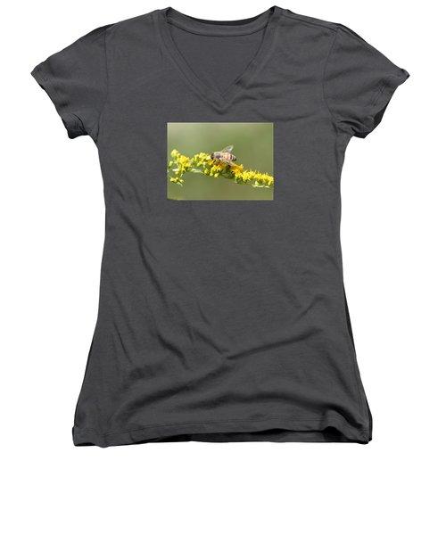 Honeybee On Goldenrod Twig Women's V-Neck T-Shirt (Junior Cut) by Lucinda VanVleck