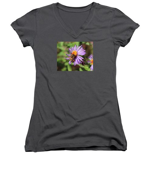 Honeybee On Purple Wild Aster Women's V-Neck T-Shirt (Junior Cut) by Lucinda VanVleck