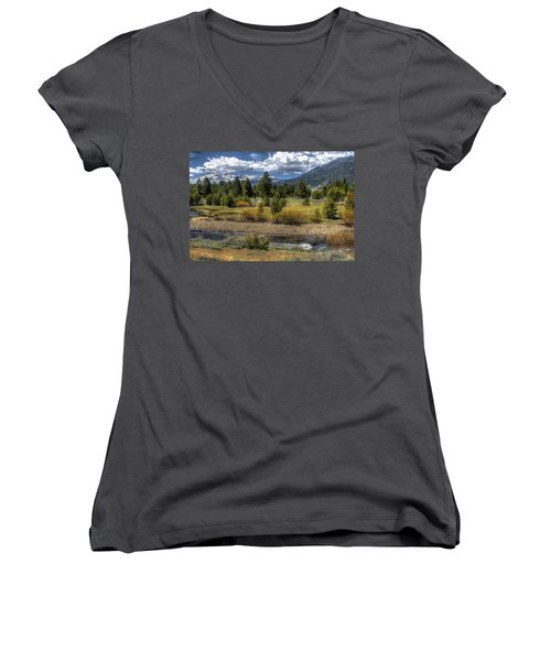 Hope Valley Wildlife Area Women's V-Neck (Athletic Fit)