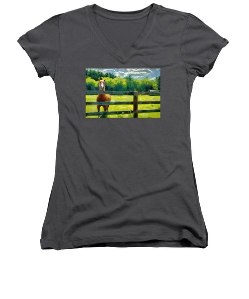 Horse In The Field Women's V-Neck T-Shirt (Junior Cut) by Jeff Kolker