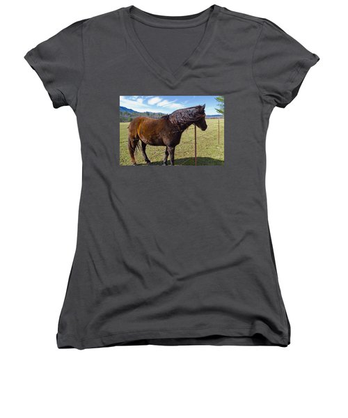 Horse Women's V-Neck T-Shirt (Junior Cut) by Melinda Fawver