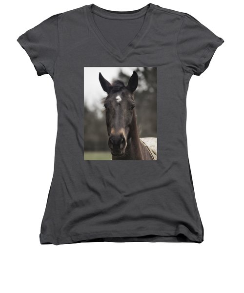 Horse With Gentle Eyes Women's V-Neck (Athletic Fit)