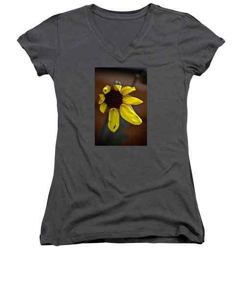 Women's V-Neck T-Shirt (Junior Cut) featuring the photograph Huangdi by Joel Loftus